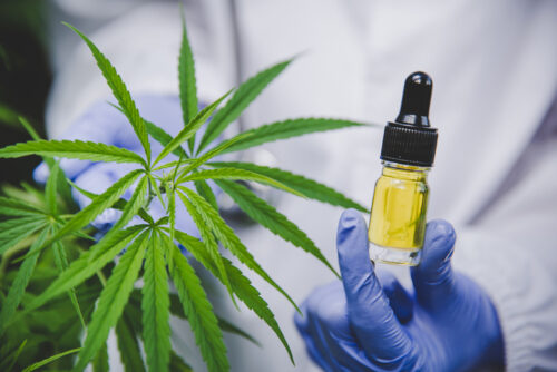 China ban on cannabis cosmetics will likely halt sales online as authorities push 'anti-drug' stance